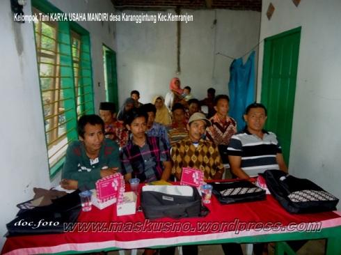 Pelatihan Kelompok Tani KARYA USAHA MANDIRI Desa Karanggintung Kemranjen