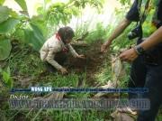 Bina Lingkungan dan Menanam Tanaman Konservasi Sempadan Sungai Serayu desa Pegalongan Patikraja Kabupaten Banyumas (15)